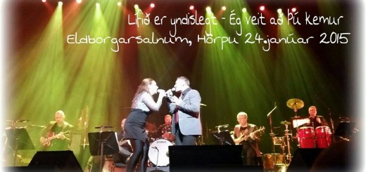 Fridgeir Bergsteinsson 01